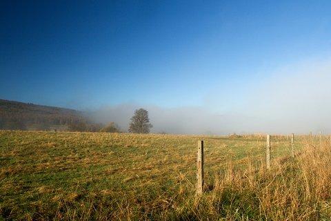 FOTKA - Mlha na pastvinách