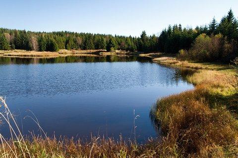 FOTKA - Rudolický rybník....