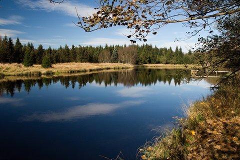 FOTKA - Rybník u Svahové