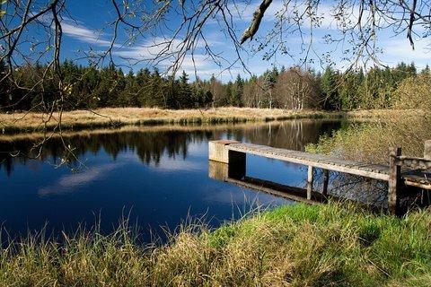 FOTKA - Nový rybník...