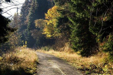 FOTKA - V Bezručově údolí