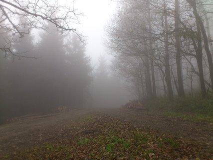 FOTKA - Říjen, výlet na Javořinu, mlha houstne