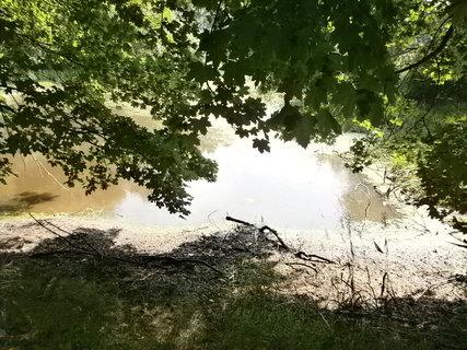 FOTKA - další rybník u tvrze
