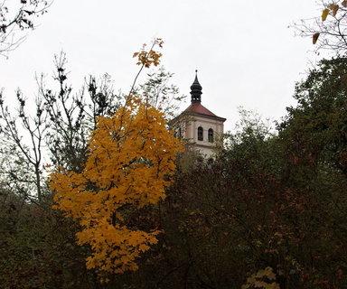 FOTKA - Podzimní den v parku