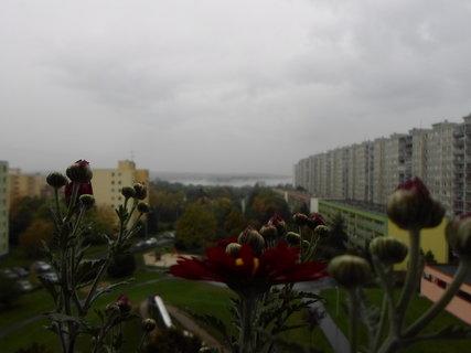 FOTKA - výhled z balkonu