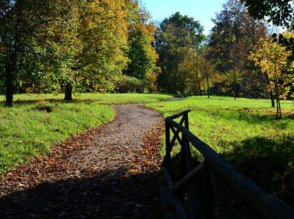 FOTKA - Podzimní procházka v doprovodu slunečních paprsků