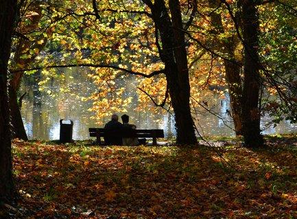 FOTKA - Podzim-podzim
