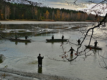 FOTKA - Podzim na Příbrazském rybníce