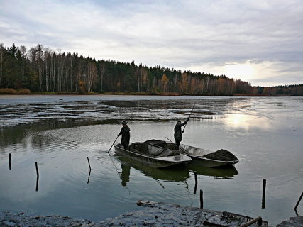 FOTKA - Rybník vydává své bohatství