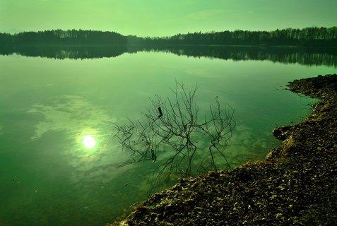 FOTKA - Slunce na hladině