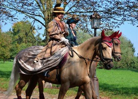 FOTKA - Koně s pokrývkou hlavy