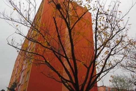 FOTKA - Barevné sídliště do červena