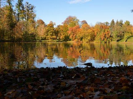 FOTKA - Teplý a slunečný podzim v parku