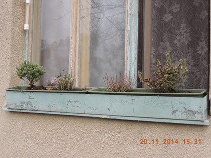 FOTKA - Okno od ložnice - podzimní osázení