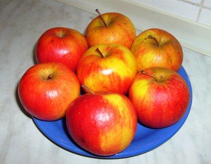 FOTKA - jablíčka z naší zahrady