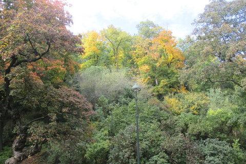 FOTKA - Petřín v podzimních barvách