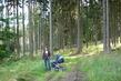 V lese na procházce