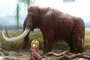 v ZOO s mamutem