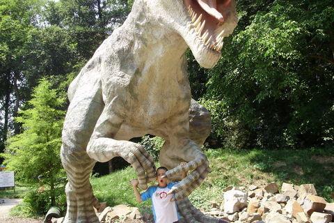 FOTKA - Dino