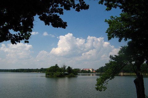 FOTKA - třeboňský rybník -SVĚT