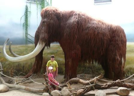 FOTKA - v ZOO s mamutem