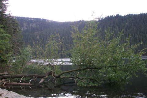 FOTKA - Šumava - Černé jezero