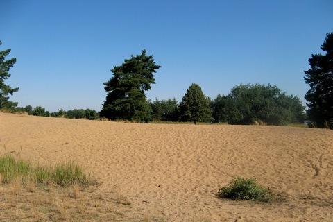 FOTKA - Sahara-v jižních Čechách