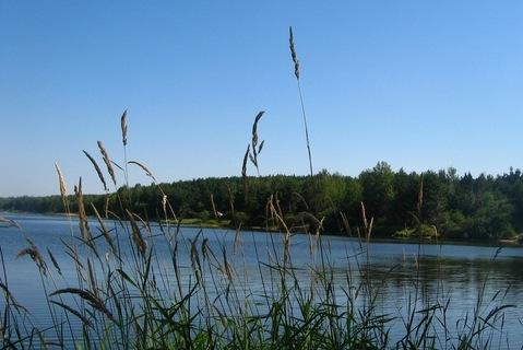 FOTKA - krása rybníků