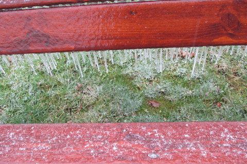 FOTKA - Dnes v parku:  lavička pro otužilé