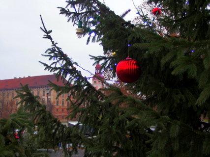 FOTKA - Průhled na zámek
