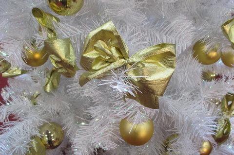 FOTKA - Stříbrné vánoční dny 2014 -  i  Zlaté vánoční dny