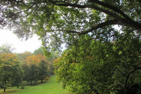 FOTKA - V říjnu bylo krásně, slunečno, zeleno...Petřín