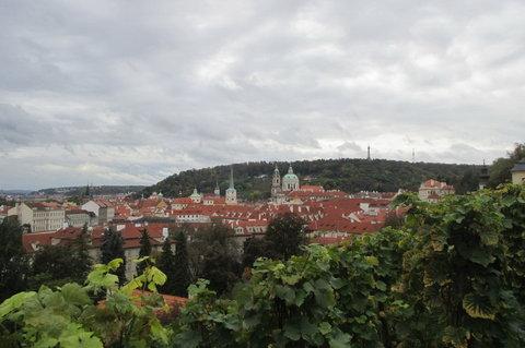 FOTKA - Pohled na Prahu  -  ze Svatováclavské vinice