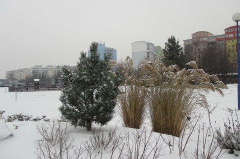 FOTKA - JS   Padá sníh a tak otvírám ústa Vločka na jazyk mi padne Dojde k tání