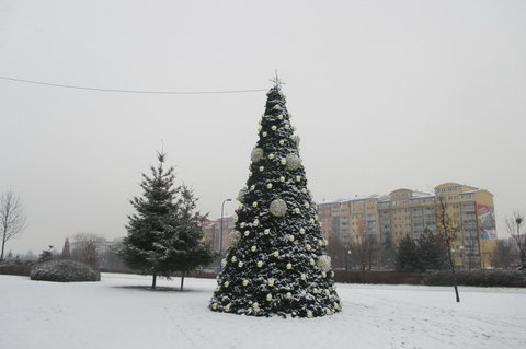 FOTKA - Padá sníh a voní jehličím,,,