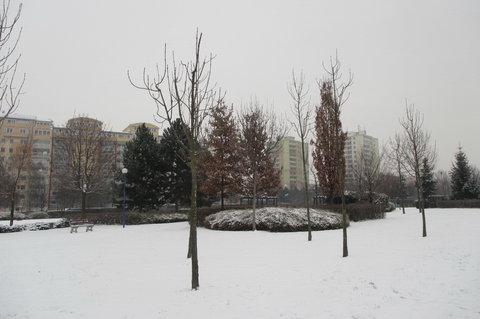 FOTKA - Sněží a sníh mi křupe pod nohou...