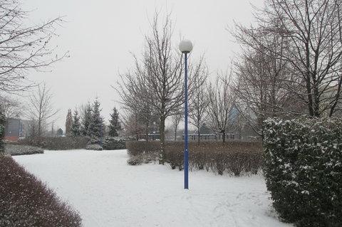 FOTKA - Sníh, padá sníh je to jako když peří poházíš
