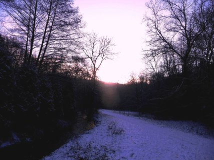 FOTKA - Cesta a východ slunce