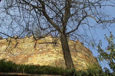 FOTKA - Hradba z jedné zahrady pod hradem