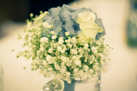 FOTKA - Svatební :   vše v barvě modré