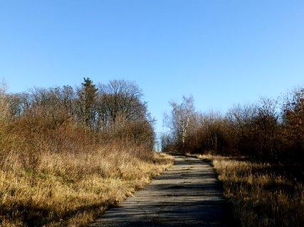 FOTKA - Už aby bylo jaro,to bude veselejší.