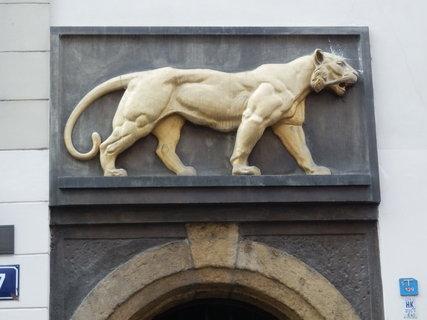FOTKA - U zlatého tygra