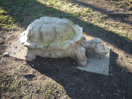 FOTKA - Dřevěná želvička