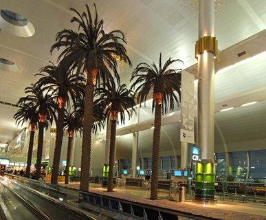 FOTKA -  palmy -výzdoba dubajského letiště