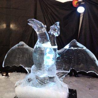 FOTKA - Ještěr z ledu
