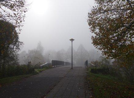 FOTKA - mlha prede mnou