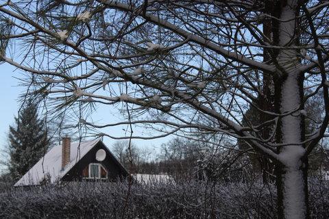 FOTKA - nasněžilo přes noc