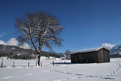 FOTKA - Okruh okolo Ramseidenu - Strom a stodola