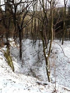 FOTKA - Svahy v kdysi krásném lázeňském parku.