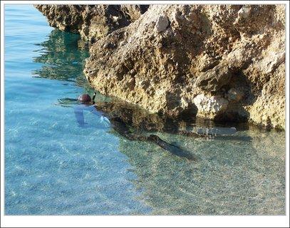 FOTKA - potápěč už jde pod vodu